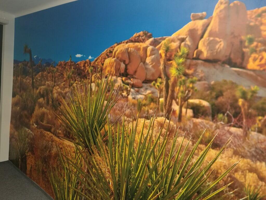 Fototapeta przedstawiająca pustynię